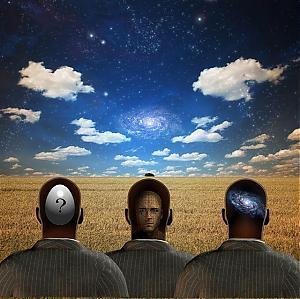 Psychanalyse de groupe – le reve social